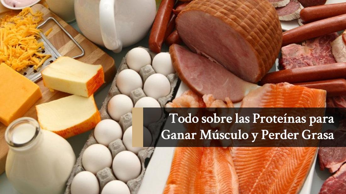 Dieta para adelgazar rapido: ¿qué proteínas debes consumir diariamente?