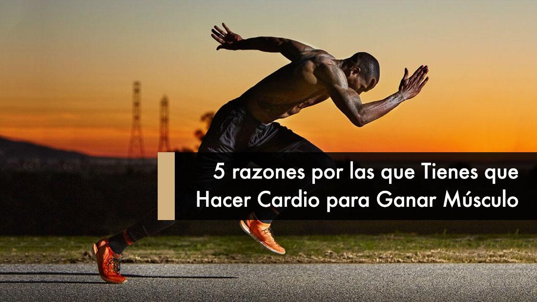 5 razones por las que Tienes que Hacer Cardio para Ganar Músculo