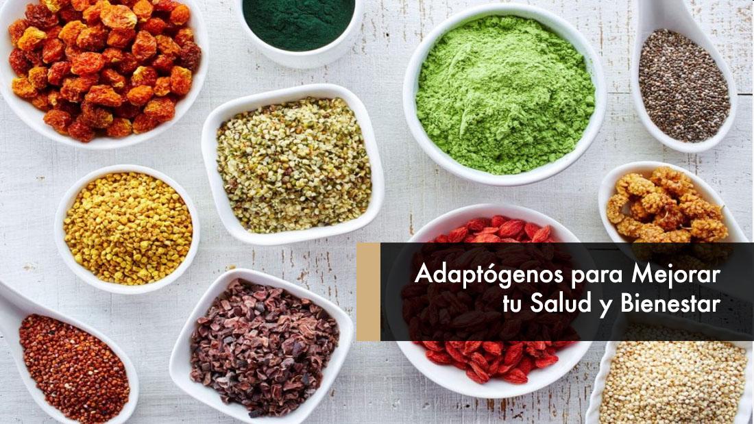 Adaptógenos para Mejorar tu Salud y Bienestar