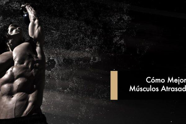 Cómo Mejorar Músculos Atrasados