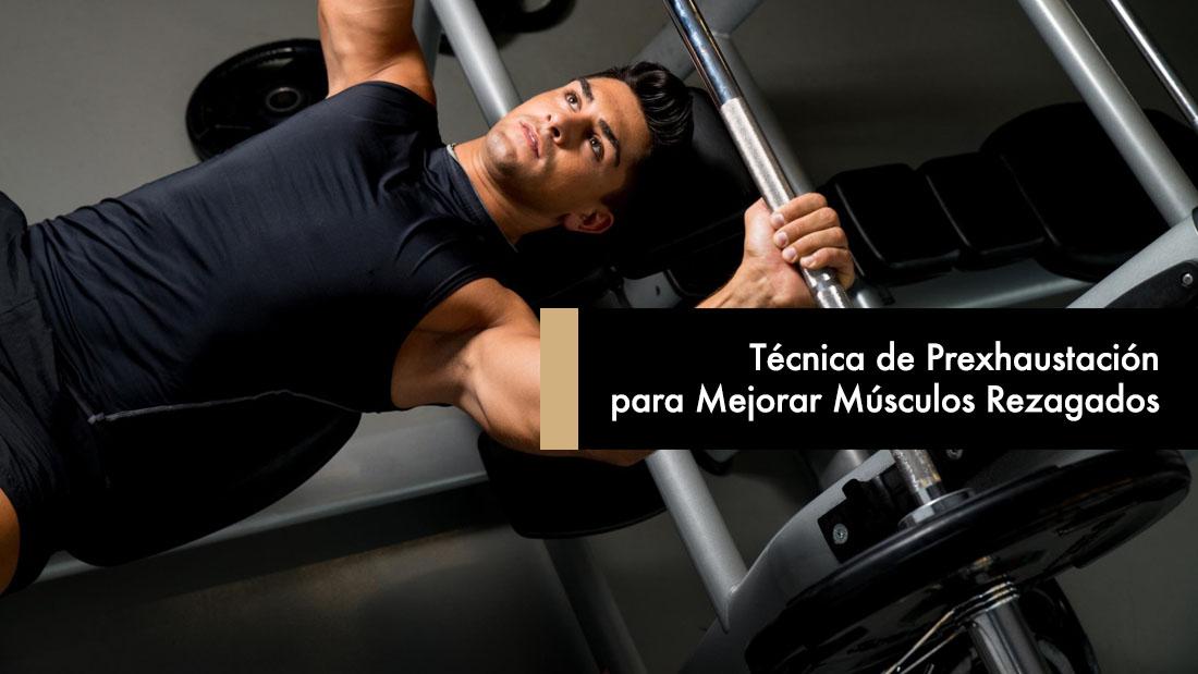 Cómo debe Entrenar un Principiante para Ganar Músculo